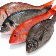Kerntemperaturen bei Fisch